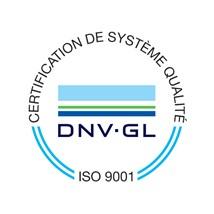 Logo DNV 2020